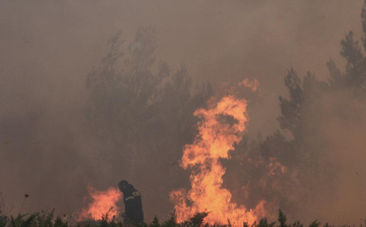 Μεγάλη πυρκαγιά σε δάσος στην Αλφειούσα