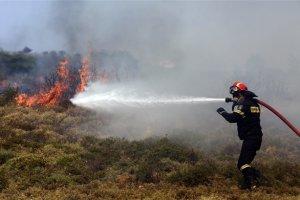 Καίγεται το δάσος πάνω απ' τη Βασιλική Τρικάλων