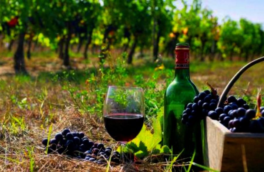 Γιορτή Κρασιού Ραψάνης