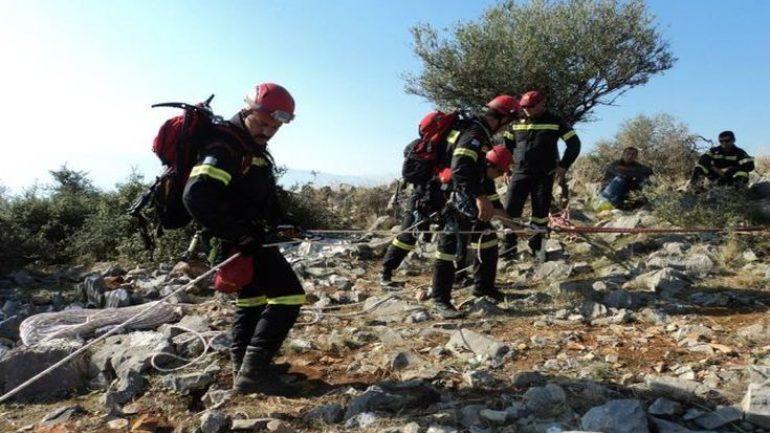 Επιχείρηση διάσωσης κατσικιών που έπεσαν σε χαράδρα