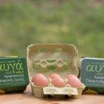 Είκοσι χρόνια αυγά Ω3 από την Αμερικανική Γεωργική Σχολή