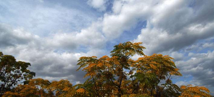 Συννεφιά και άνοδος της θερμοκρασίας την Παρασκευή