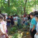 Παιδιά στην 17η Οικολογική Γιορτή