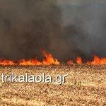 «Κόλαση» φωτιάς στο Μεγάλο Κεφαλόβρυσο Τρικάλων