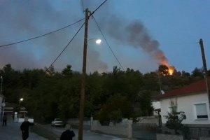 Απειλεί σπίτια η φωτιά στη Βασιλική Τρικάλων (φωτό)