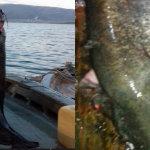 Έπιασε ψάρι 85 κιλών στην Τριχωνίδα
