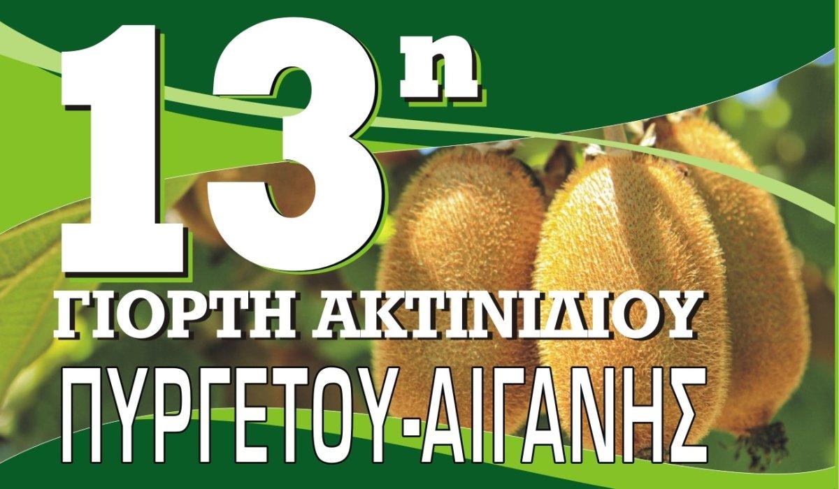 Το Σαββατοκύριακο διοργανώνεται η 13η Γιορτή Ακτινιδίου Πυργετού – Αιγάνης