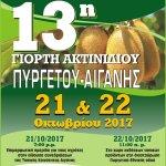 13η Γιορτή Ακτινίδου Πυργετού-Αιγάνης
