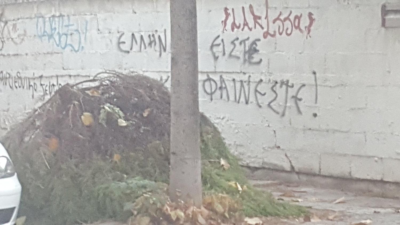 κομμενα κλαδια οδος Καραισκακη (3)
