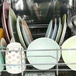 Τα πλυντήρια πιάτων «φιλοξενούν» βακτήρια και μύκητες