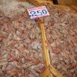 Προστατευόμενα» είδη θαλασσινών σερβίρονται ως εκλεκτά εδέσματα!