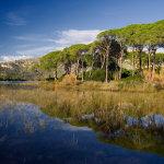 Μια καινούργια αφετηρία για την προστασία της φύσης στην Ελλάδα