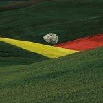 Παρουσίαση – αφιέρωμα στον Ιταλό φωτογράφο Φράνκο Φοντάνα