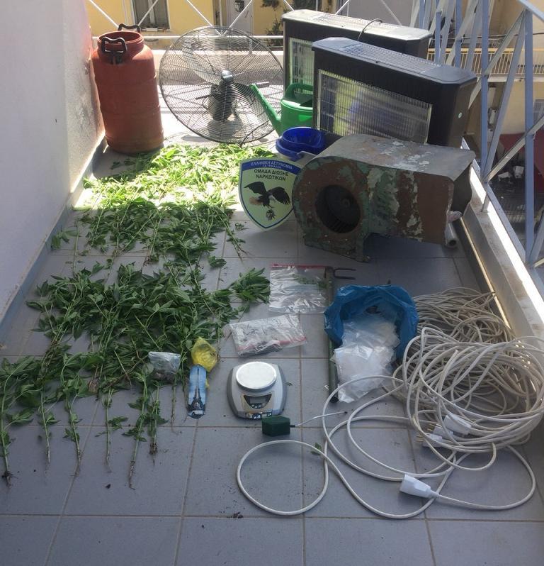 Πλήρως εξοπλισμένο εργαστήριο υδροπονικής καλλιέργειας κάνναβης στα Τρίκαλα