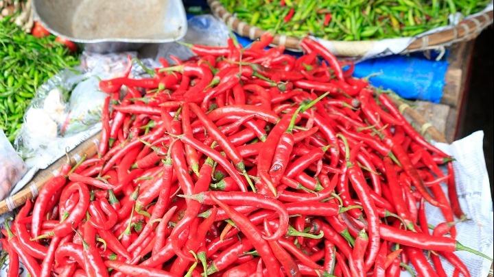 Έφαγε την πιο καυτερή πιπεριά τσίλι στον κόσμο και… διαβάστε τί έπαθε