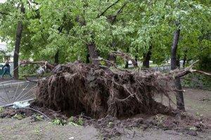Ρωσία: Δύο νεκροί από σφοδρή θύελλα στη Μόσχα