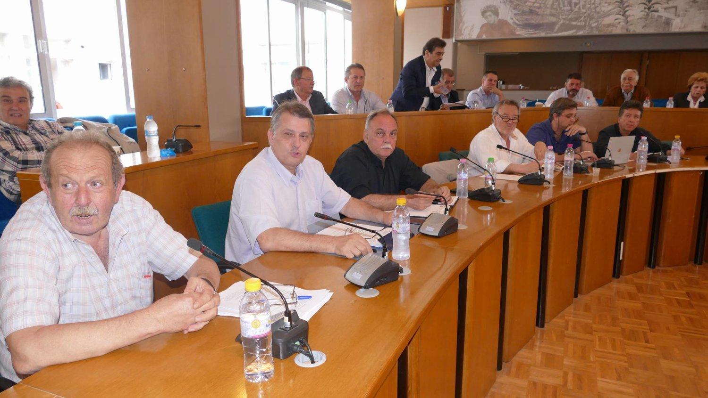 Περιφερειακό σύμβούλιο 1