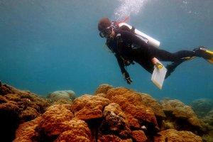 Προβολή του ντοκιμαντέρ «Ωκεανός Οξέος» στο Συνεδριακό Κέντρο Τράπεζας Πειραιώς
