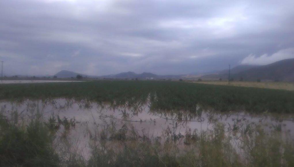 Νέα Δύναμη: Πέρα… βρέχει στο Δήμο Τεμπών