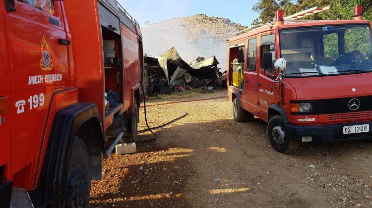 Μεγάλη φωτιά στο Γριζάνο – Κάηκε ποιμνιοστάσιο
