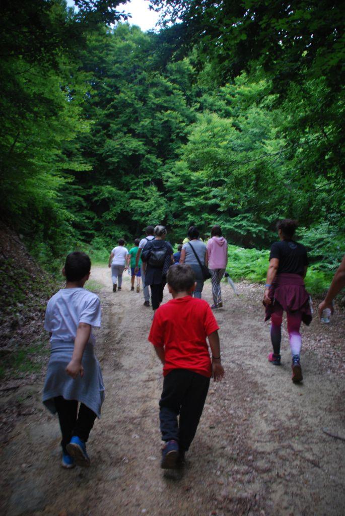 mountain enduro βερδικουσια (14)