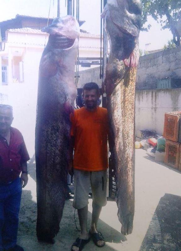 Πήγε για ψάρεμα και έβγαλε δύο… τέρατα
