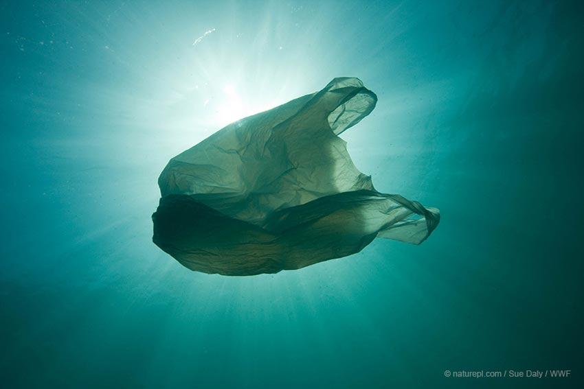 Καλοκαίρι χωρίς πλαστικά σε 6 βήματα