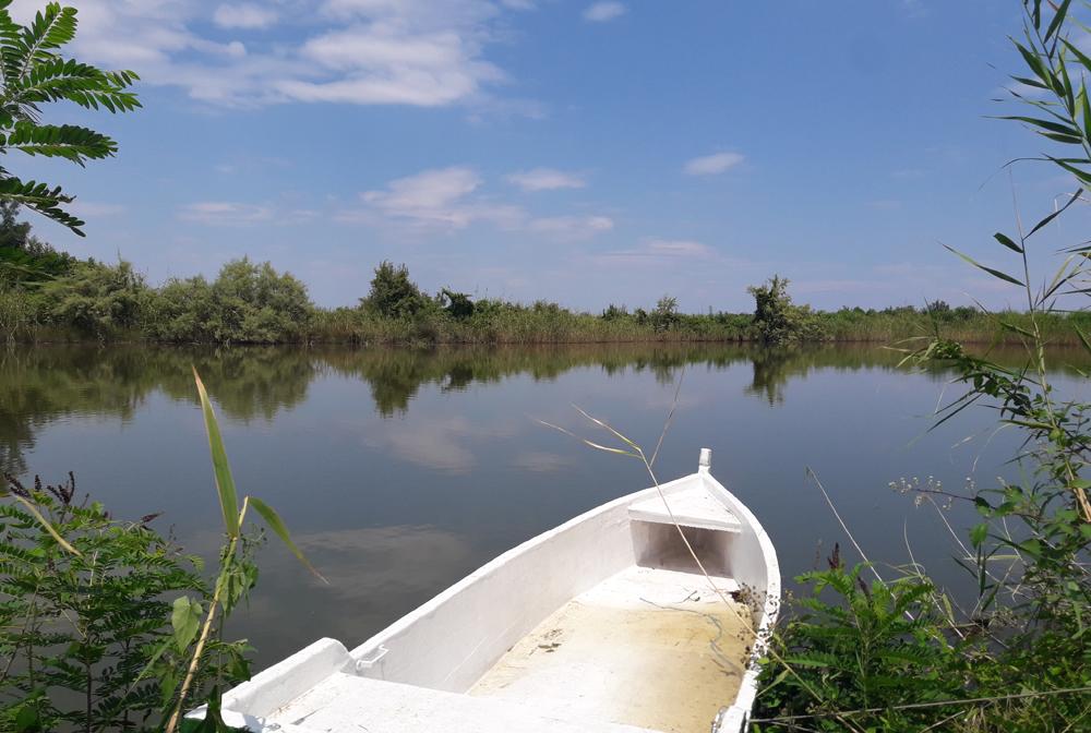 Δέλτα του Πηνειού ποταμού: Εκεί που ο Πηνειός συναντά το Αιγαίο Πέλαγος