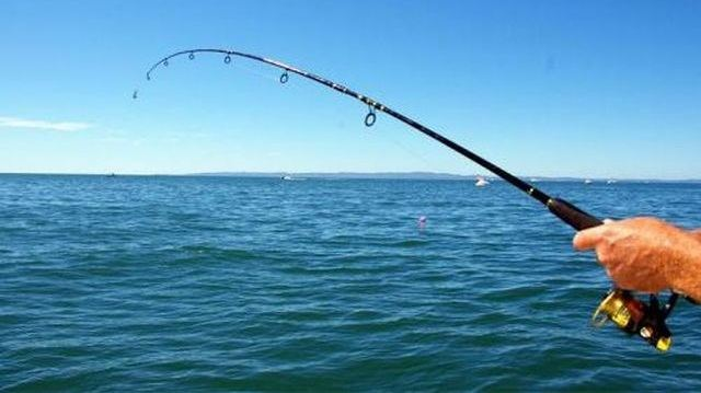Φθιώτιδα: Πήγε να πιάσει το καλάμι ψαρέματος και πνίγηκε