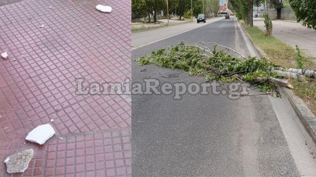 Λαμία: Έπεσαν σοβάδες και δέντρα