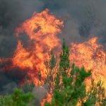 Δύο πυρκαγιές στην Κρήτη