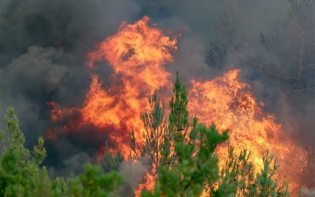 Σε πλήρη εξέλιξη οι πυρκαγιές στη Ζάκυνθο