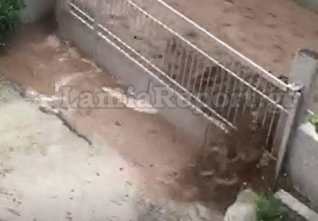 Φθιώτιδα: Ποτάμια οι δρόμοι (video)