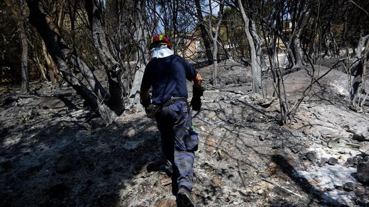 Ταυτοποιήθηκαν ακόμη 6 σοροί από την φονική πυρκαγιά στο Μάτι