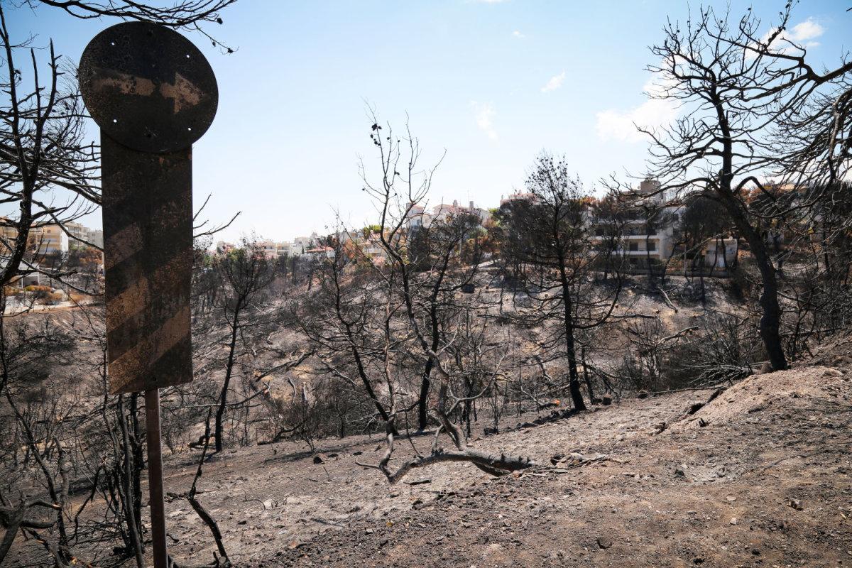 Τι λέει το πόρισμα Συνολάκη για την φονική πυρκαγιά στο Μάτι Αττικής