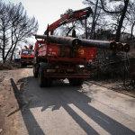 Εικόνες από τις εργασίες αποκατάστασης στο Μάτι
