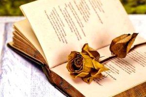 Πρώτο βραβείο Ποίησης στον Tρικαλινό φιλόλογο Σοφοκλή Μητρούσια