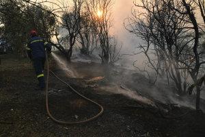 Πυρκαγιά στον Διόνυσο Αττικής – Ισχυρές πυροσβεστικές δυνάμεις στην περιοχή