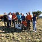 Κυνηγοί απελευθέρωσαν λαγούς στο Συκούριο