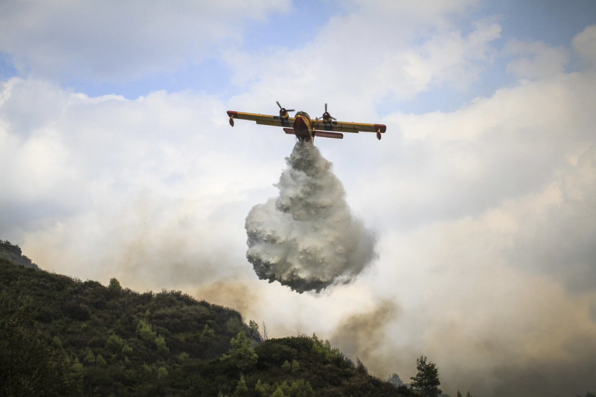 Σε ύφεση η πυρκαγιά στην Ηλεία