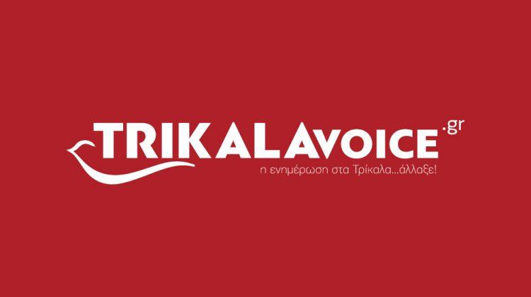 7 χρόνια trikalavoice.gr