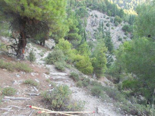Πεζοπορίες για όλους,στον 3ο Ορειβατικό αγώνα Τσαριτσάνης-Ολύμπου
