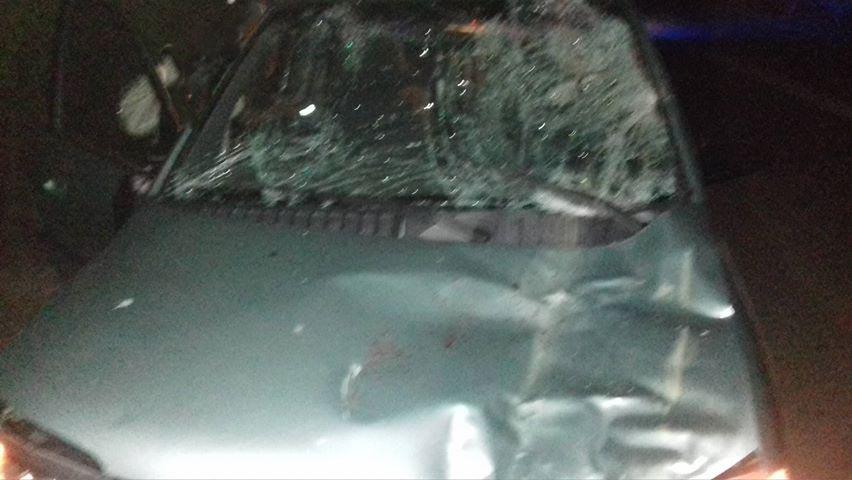 Λάρισα: Σύγκρουση αυτοκινήτου με μουλάρι ! (φωτ.)