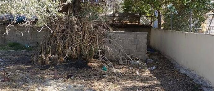 Εικόνες σοκ από κτηνωδία στην Κρήτη! Έκαψαν ζωντανό σκυλάκι