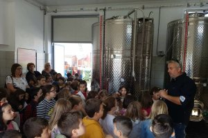 Μαθητές του 3ου Δημοτικού Σχολείου σε αμπελώνα και οινοποιείο στις Ελευθερές
