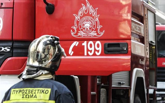 Στις φλόγες παραδόθηκε στάβλος στο δρόμο Αμπελώνα-Τυρνάβου