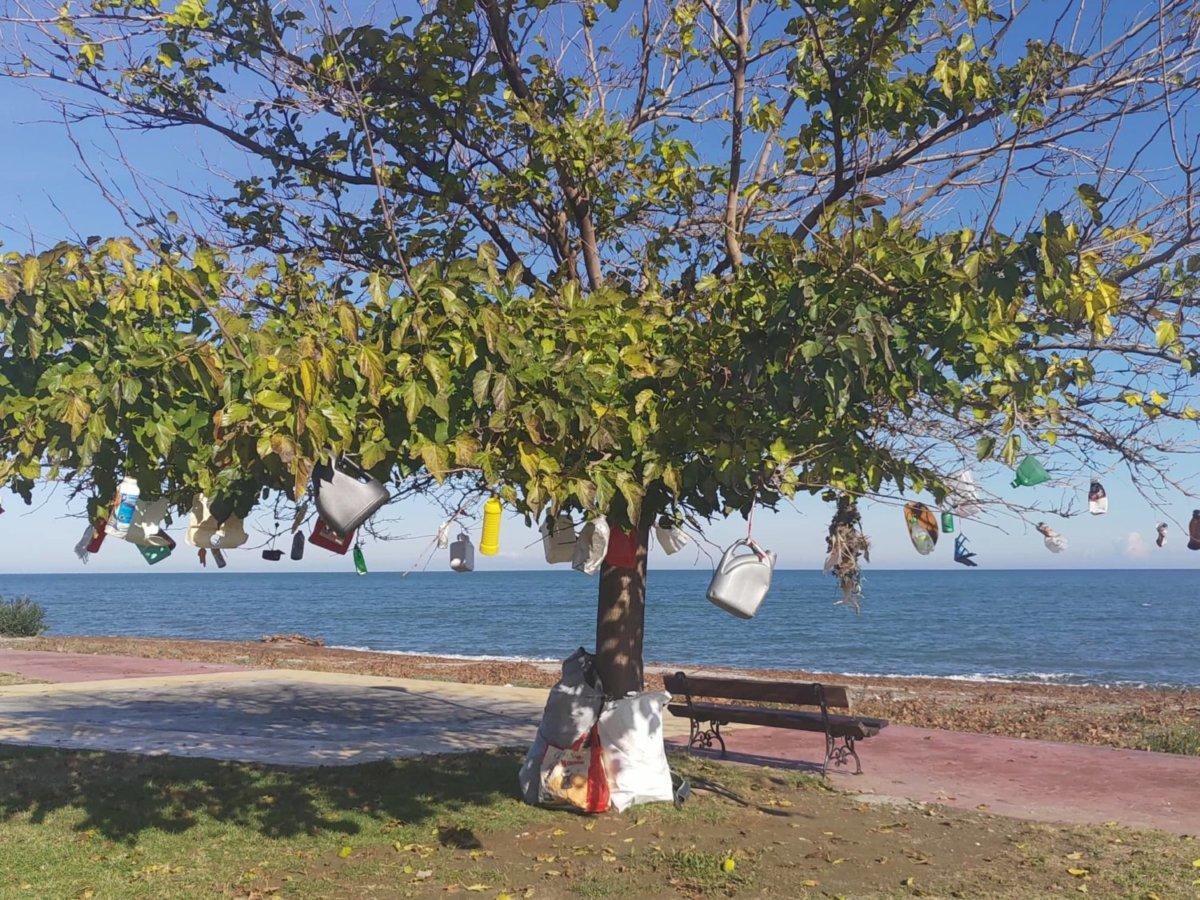 Με σκουπίδια από την καταιγίδα «στόλισαν» δέντρο στον Αγιόκαμπο!